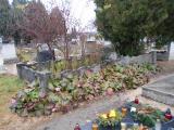 Hadisír a református temetőben felújítás előtt